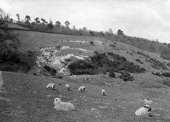Landslip at Putley. Photo by Alfred Watkins 1904